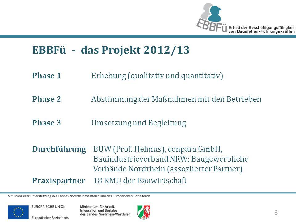 EBBFü - das Projekt 2012/13 Phase 1 Erhebung (qualitativ und quantitativ) Phase 2 Abstimmung der Maßnahmen mit den Betrieben.