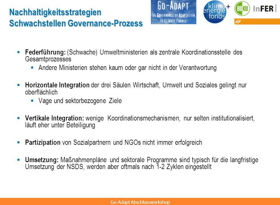 Nachhaltigkeitsstrategien Schwachstellen Governance-Prozess