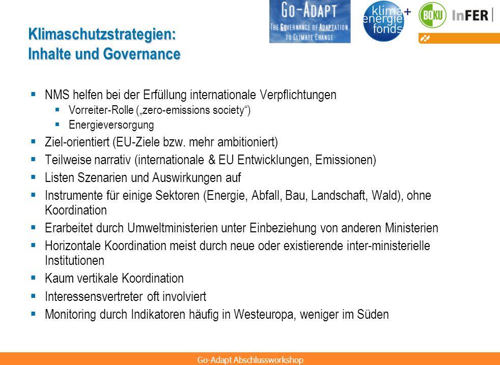 Klimaschutzstrategien: Inhalte und Governance