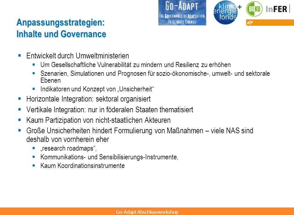 Anpassungsstrategien: Inhalte und Governance