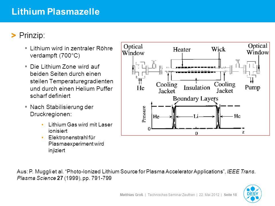 Lithium Plasmazelle Prinzip: