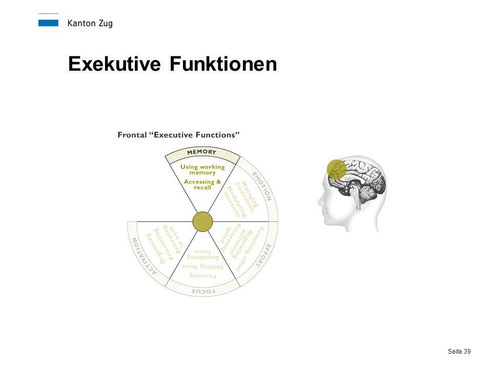 Exekutive Funktionen