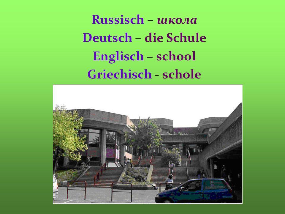 Russisch – школа Deutsch – die Schule Englisch – school Griechisch - schole
