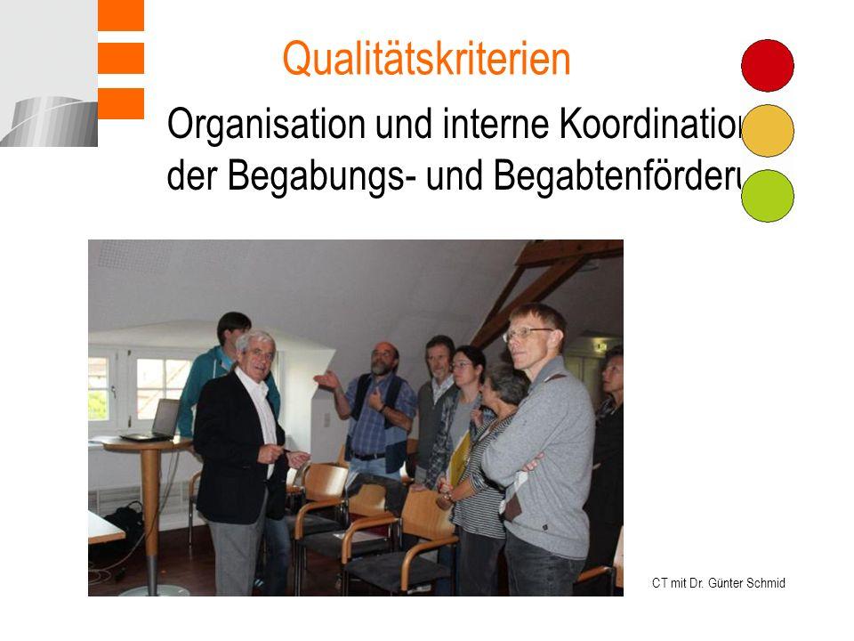 Qualitätskriterien Organisation und interne Koordination der Begabungs- und Begabtenförderung.
