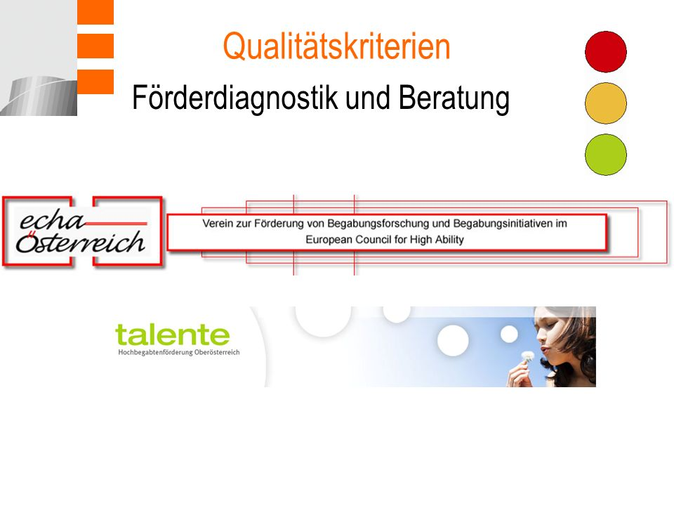 Qualitätskriterien Förderdiagnostik und Beratung