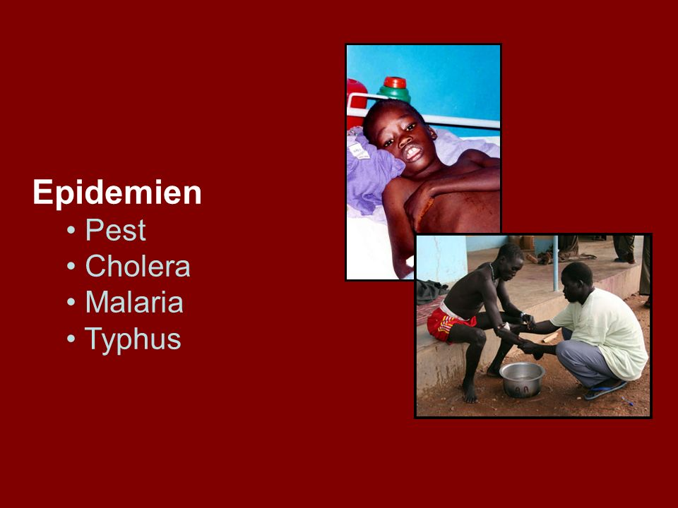 Epidemien Pest Cholera Malaria Typhus