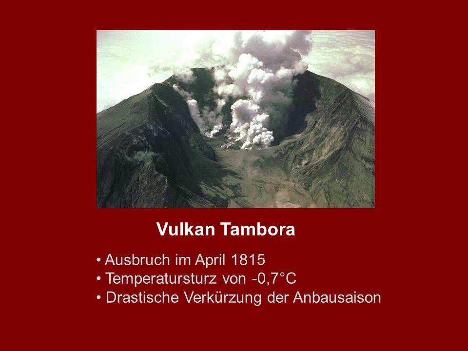 Vulkan Tambora Ausbruch im April 1815 Temperatursturz von -0,7°C