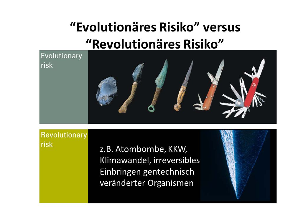 Evolutionäres Risiko versus Revolutionäres Risiko