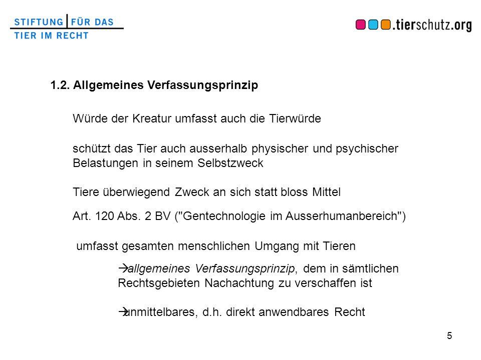 1.2. Allgemeines Verfassungsprinzip