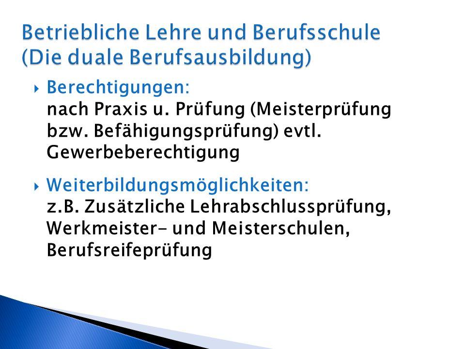 Betriebliche Lehre und Berufsschule (Die duale Berufsausbildung)