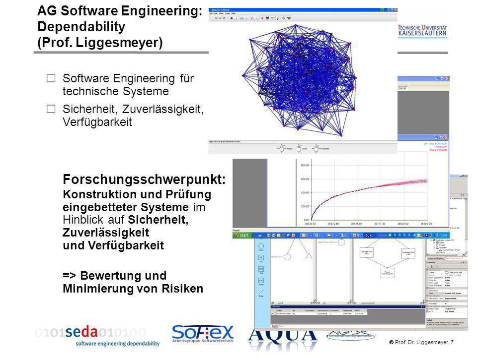 AG Software Engineering: Dependability (Prof. Liggesmeyer)