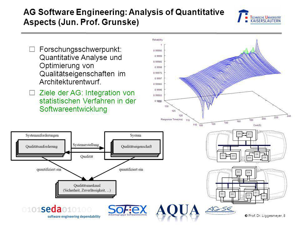 AG Software Engineering: Analysis of Quantitative Aspects (Jun. Prof