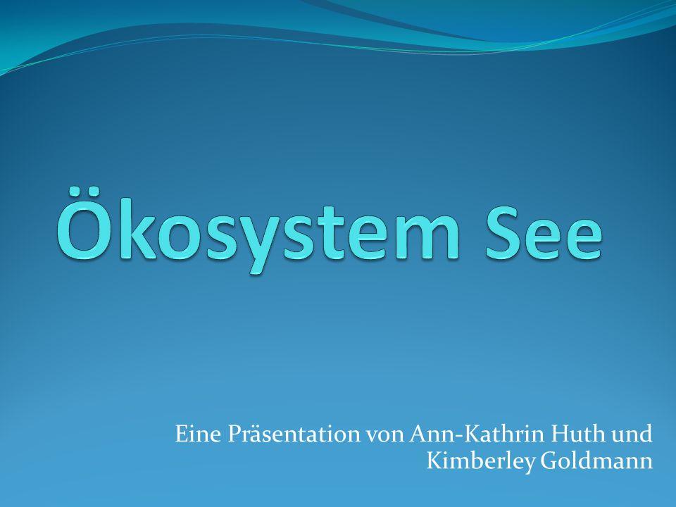 Eine Präsentation von Ann-Kathrin Huth und Kimberley Goldmann