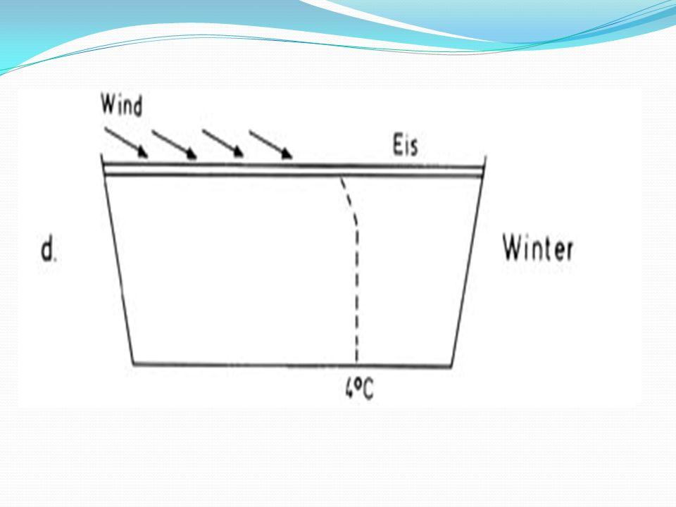 Jahresverlauf Frühjahrszirkulation/ Herbstzirkulation: Durchmischung der Stoffkonzentrationen im See durch Wind.