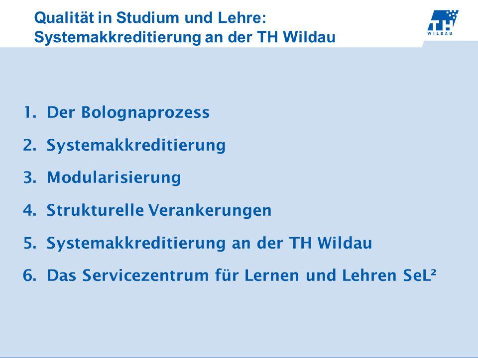 Qualität in Studium und Lehre: Systemakkreditierung an der TH Wildau