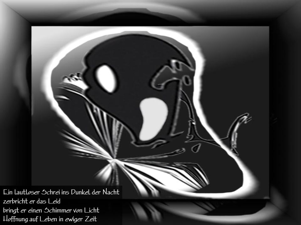 Ein lautloser Schrei ins Dunkel der Nacht