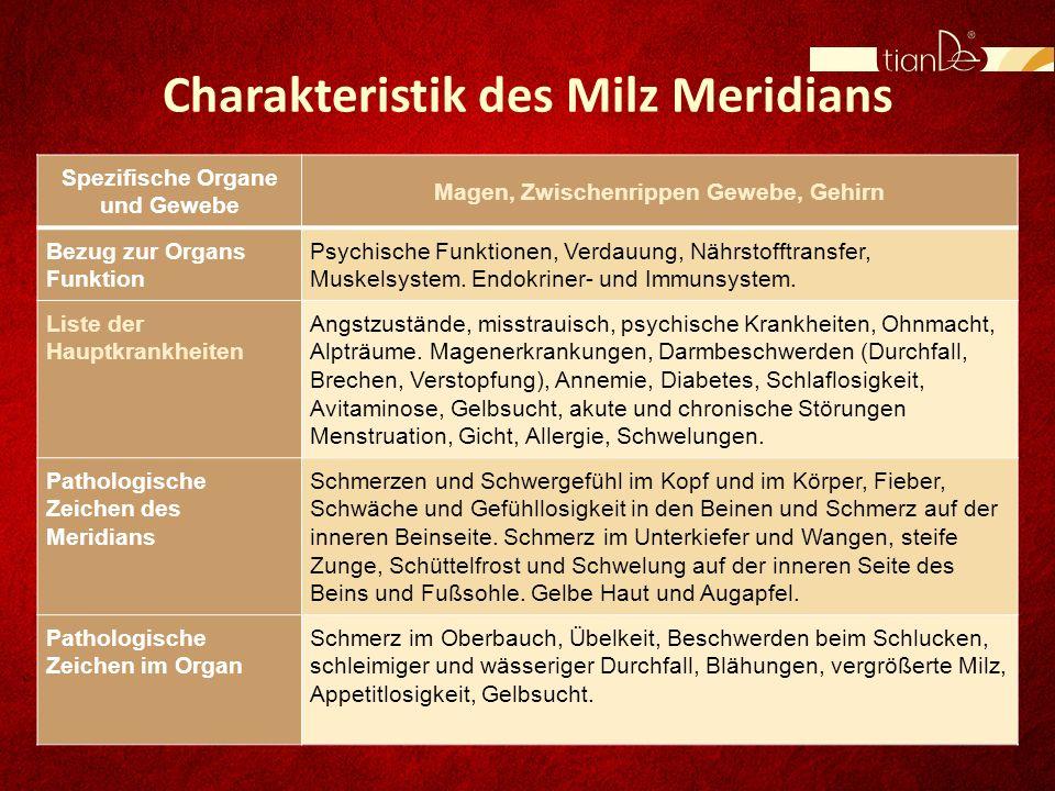 Charakteristik des Milz Meridians