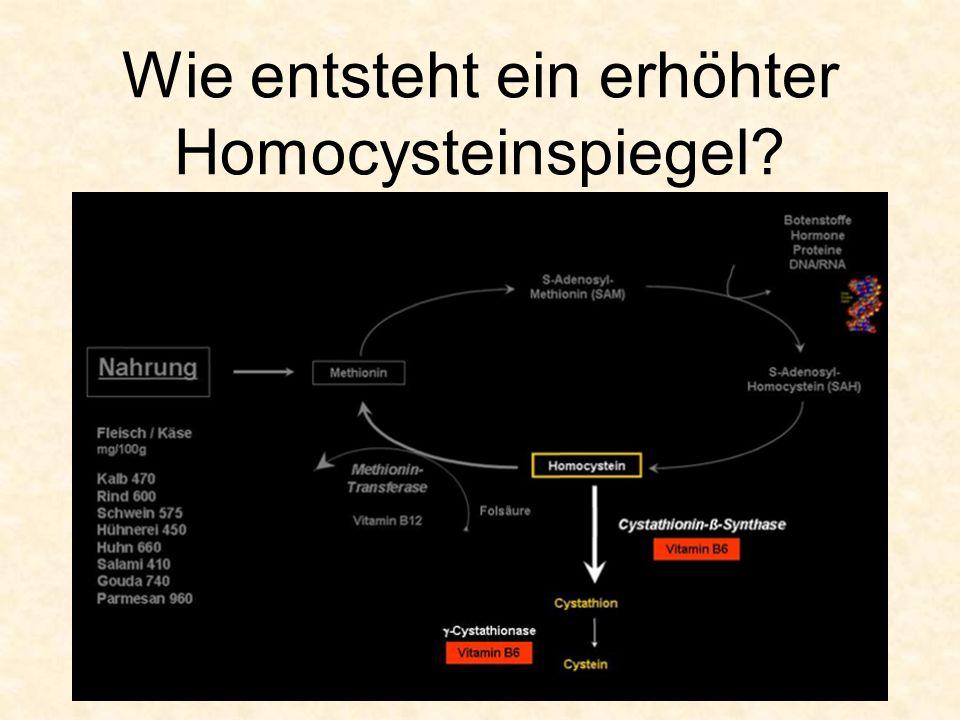 Wie entsteht ein erhöhter Homocysteinspiegel