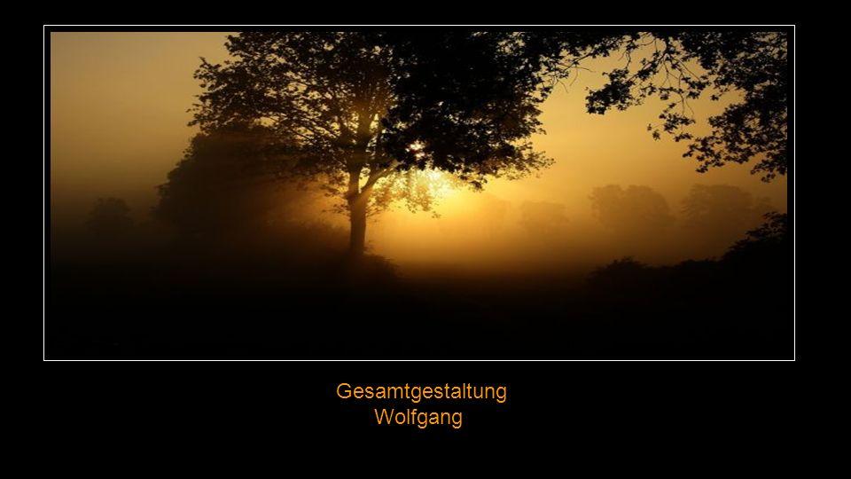 Gesamtgestaltung Wolfgang