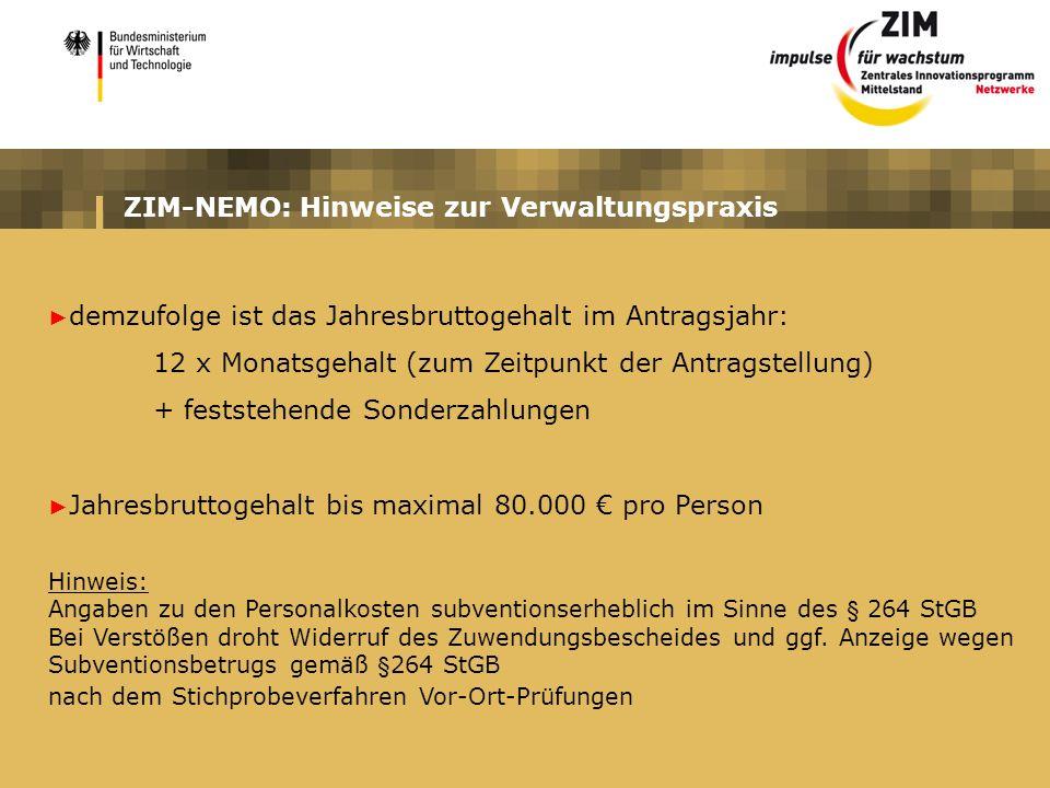 ZIM-NEMO: Hinweise zur Verwaltungspraxis