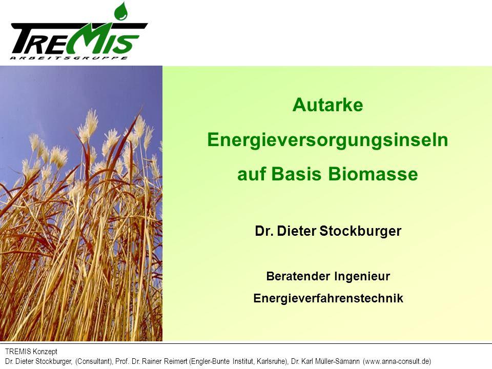 Energieversorgungsinseln Energieverfahrenstechnik