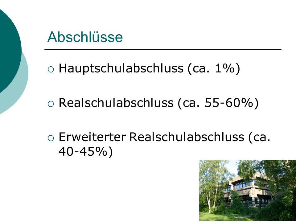 Abschlüsse Hauptschulabschluss (ca. 1%)