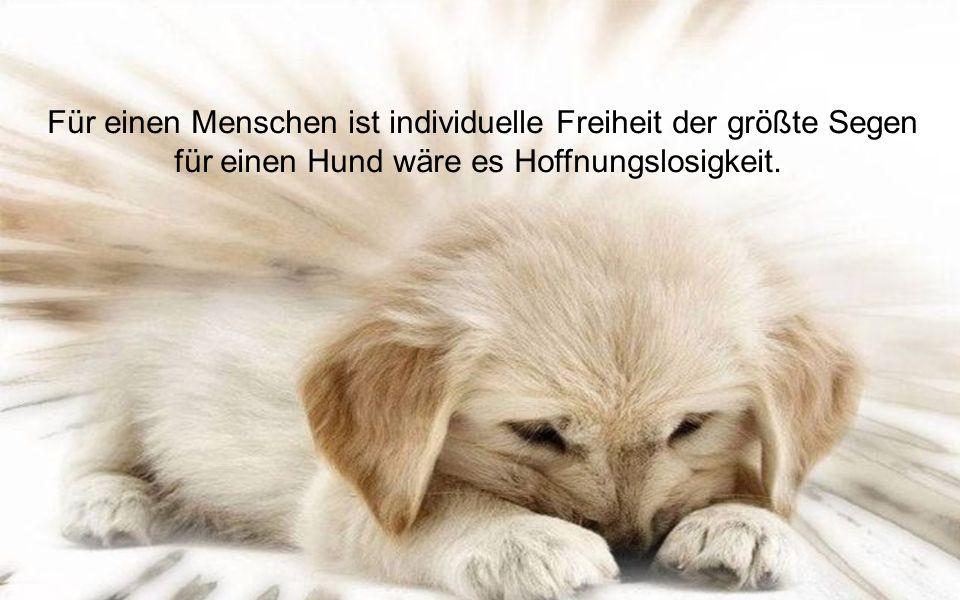 Für einen Menschen ist individuelle Freiheit der größte Segen für einen Hund wäre es Hoffnungslosigkeit.