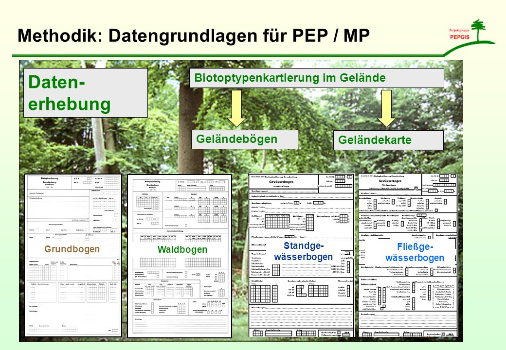 Methodik: Datengrundlagen für PEP / MP