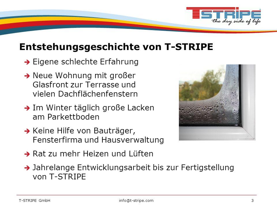 Entstehungsgeschichte von T-STRIPE