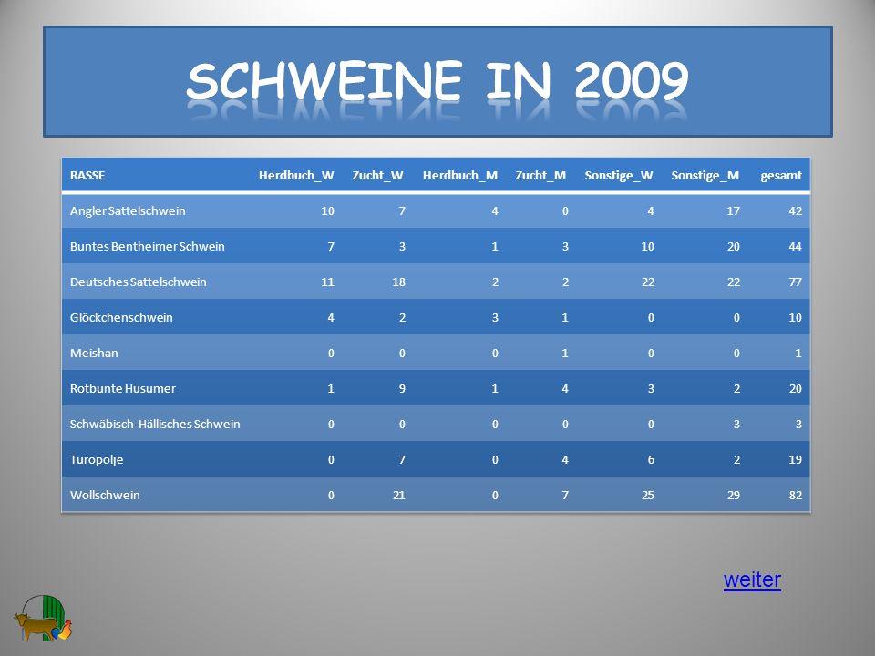 Schweine in 2009 weiter RASSE Herdbuch_W Zucht_W Herdbuch_M Zucht_M