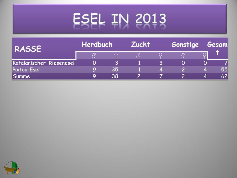 Esel in 2013 RASSE Herdbuch Zucht Sonstige Gesamt ♂ ♀