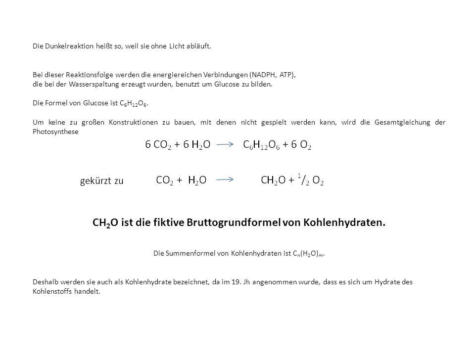 CH2O ist die fiktive Bruttogrundformel von Kohlenhydraten.