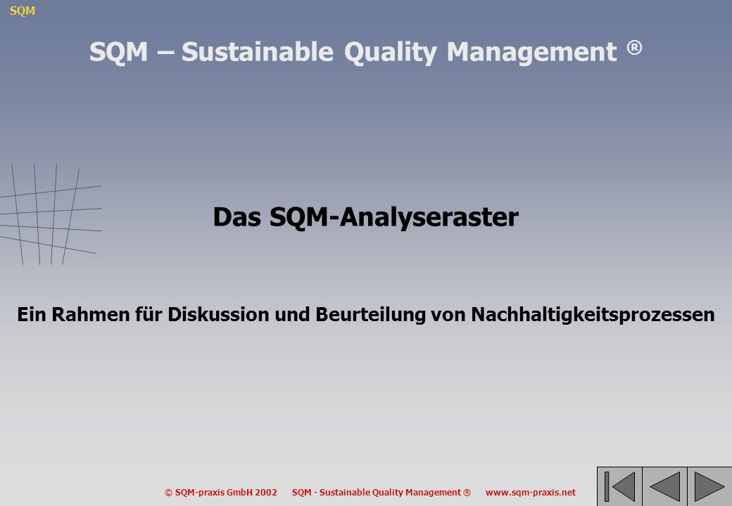 SQM – Sustainable Quality Management ® Das SQM-Analyseraster