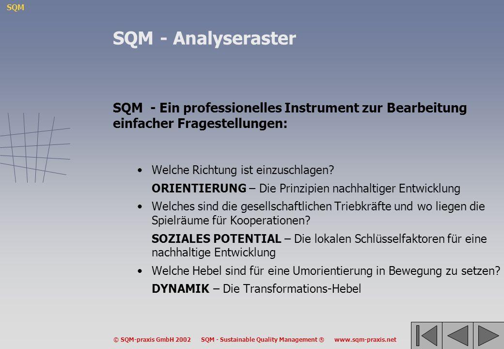 SQM - Analyseraster SQM - Ein professionelles Instrument zur Bearbeitung einfacher Fragestellungen: