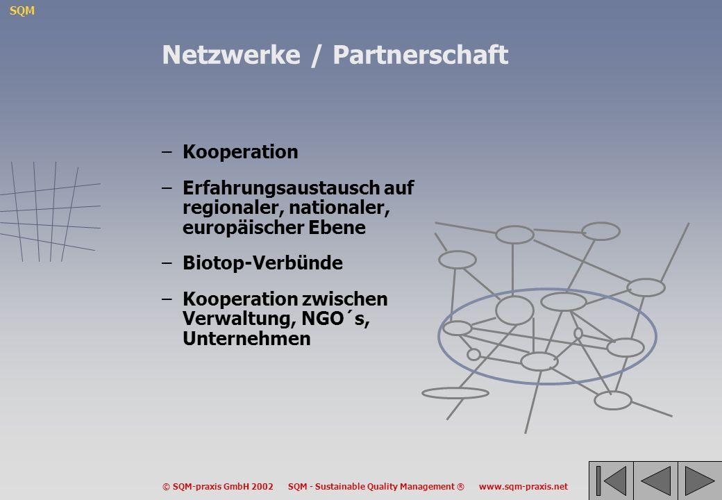 Netzwerke / Partnerschaft