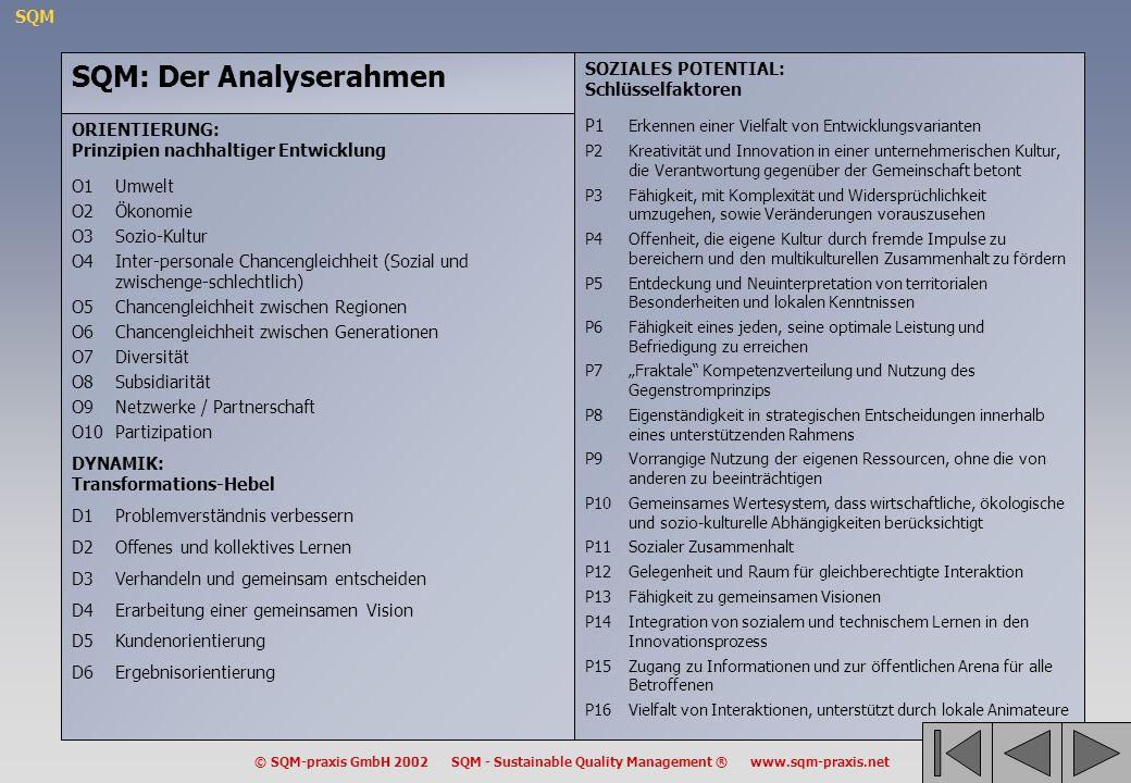SQM: Der Analyserahmen