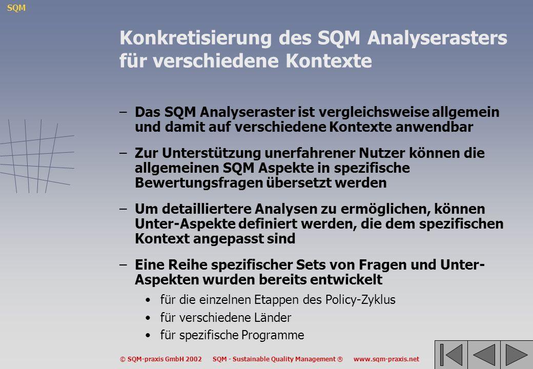 Konkretisierung des SQM Analyserasters für verschiedene Kontexte