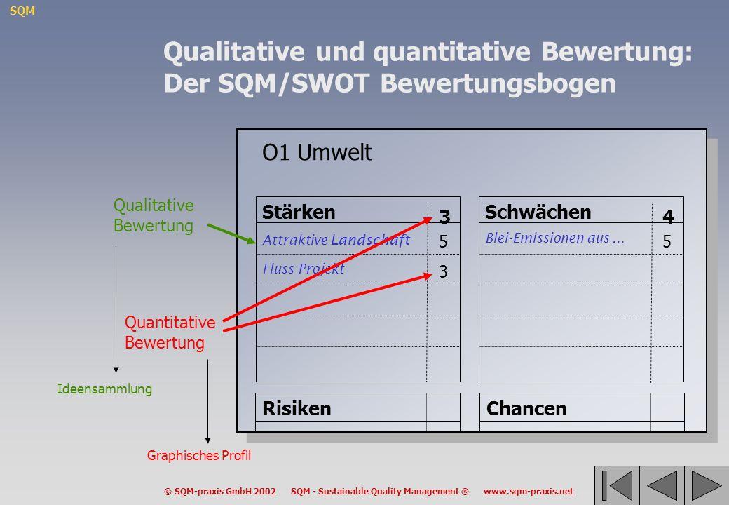 Qualitative und quantitative Bewertung: Der SQM/SWOT Bewertungsbogen
