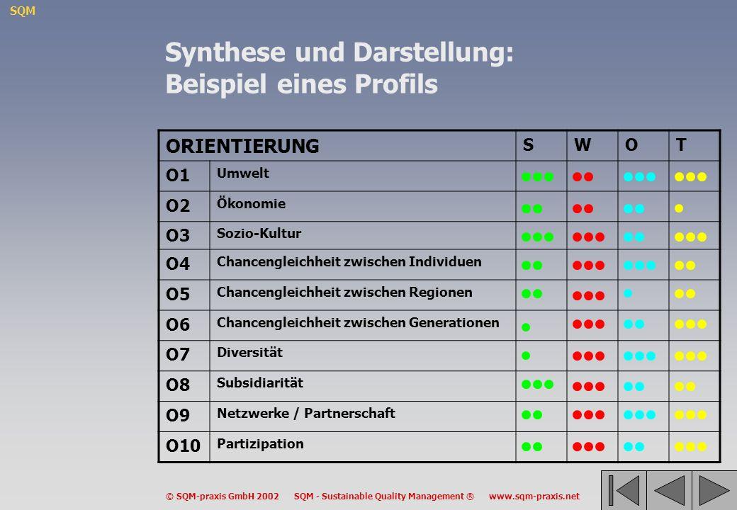 Synthese und Darstellung: Beispiel eines Profils