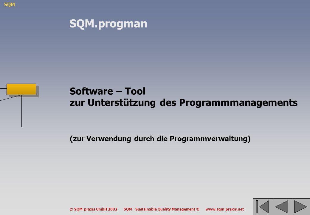SQM.progman Software – Tool zur Unterstützung des Programmmanagements