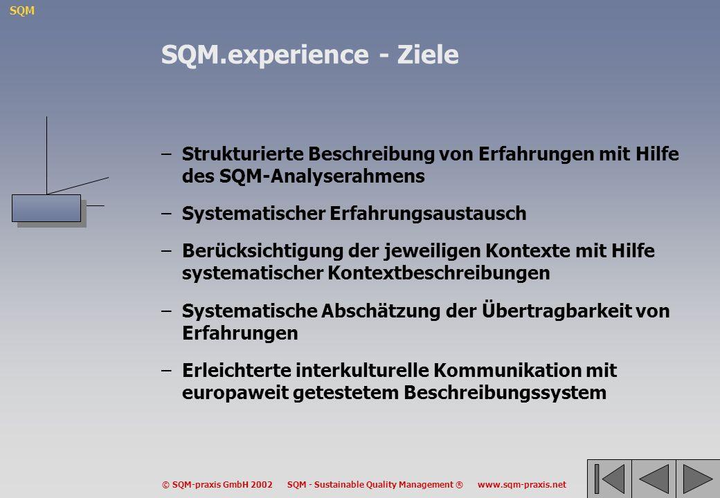 SQM.experience - Ziele Strukturierte Beschreibung von Erfahrungen mit Hilfe des SQM-Analyserahmens.