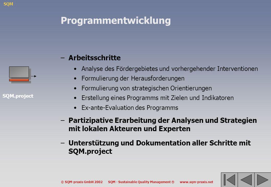 Programmentwicklung Arbeitsschritte