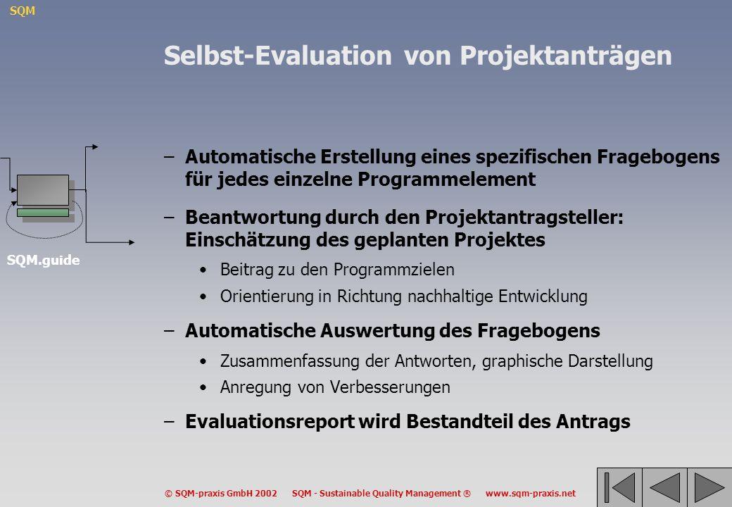 Selbst-Evaluation von Projektanträgen