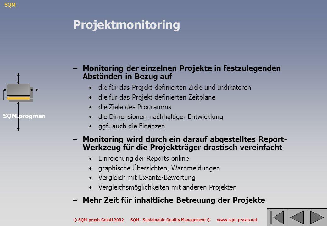 Projektmonitoring Monitoring der einzelnen Projekte in festzulegenden Abständen in Bezug auf. die für das Projekt definierten Ziele und Indikatoren.