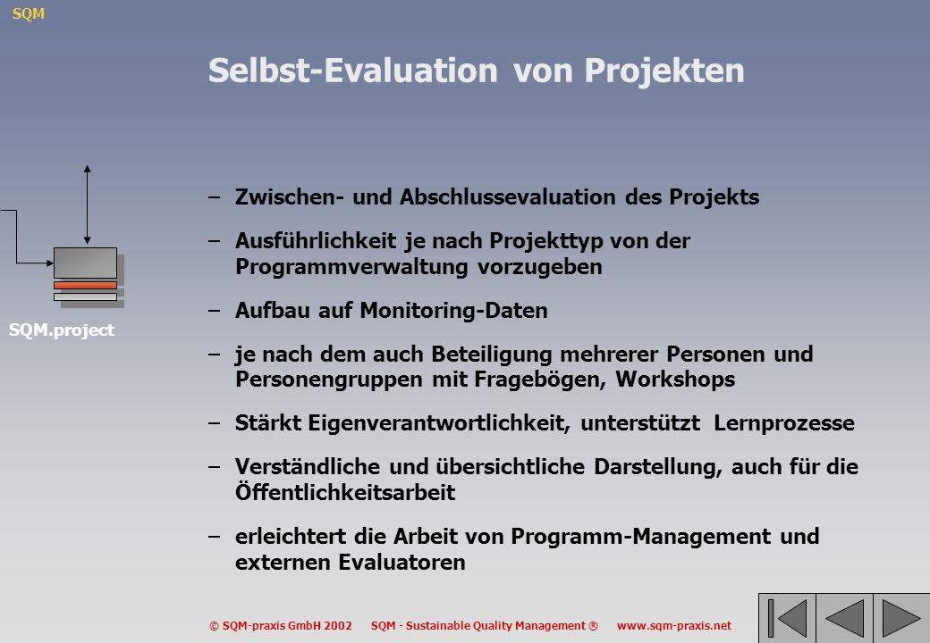 Selbst-Evaluation von Projekten