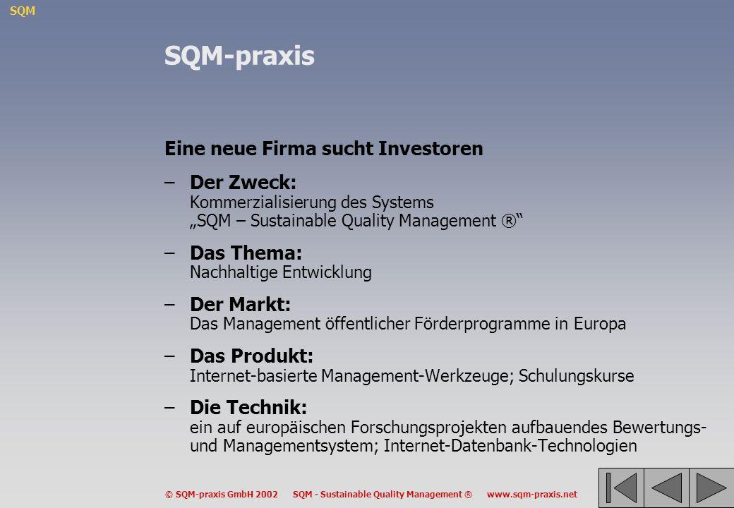 SQM-praxis Eine neue Firma sucht Investoren