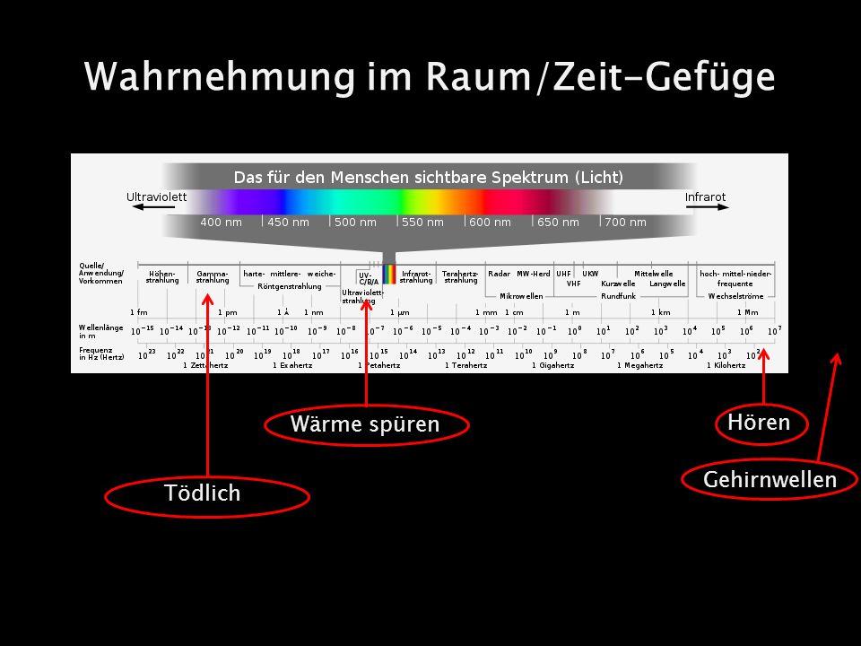 Wahrnehmung im Raum/Zeit-Gefüge