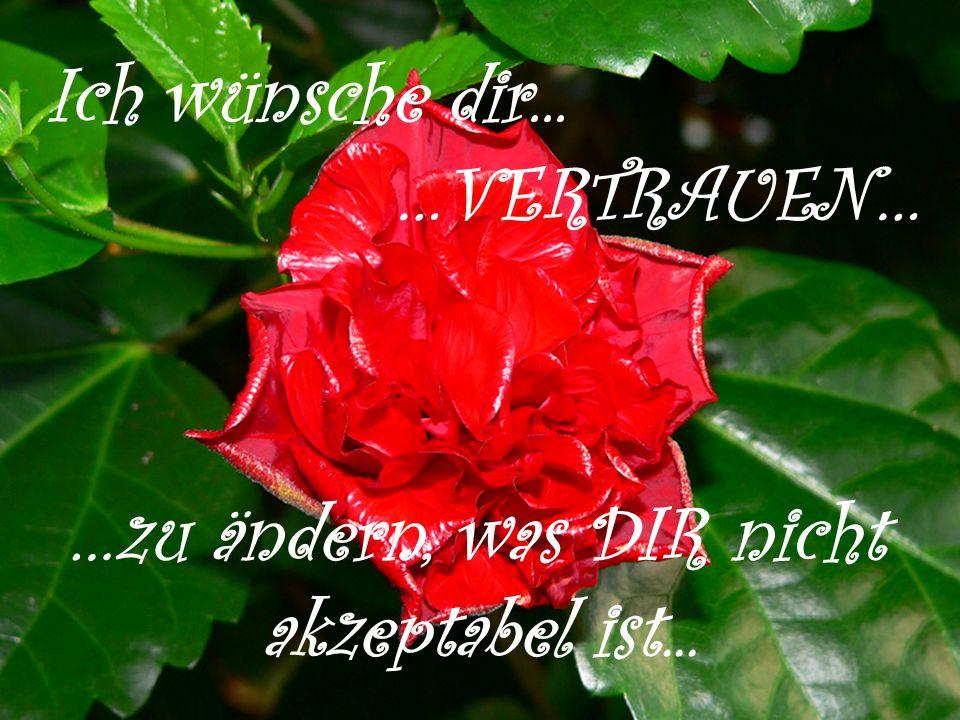 Ich wünsche dir... …VERTRAUEN… …zu ändern, was DIR nicht akzeptabel ist...