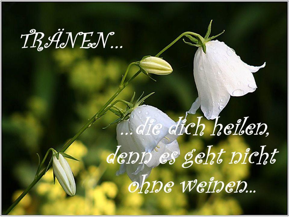 TRÄNEN… …die dich heilen, denn es geht nicht ohne weinen...