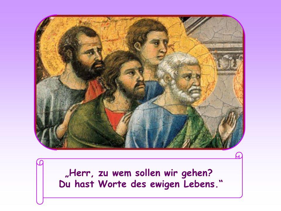 """""""Herr, zu wem sollen wir gehen Du hast Worte des ewigen Lebens."""